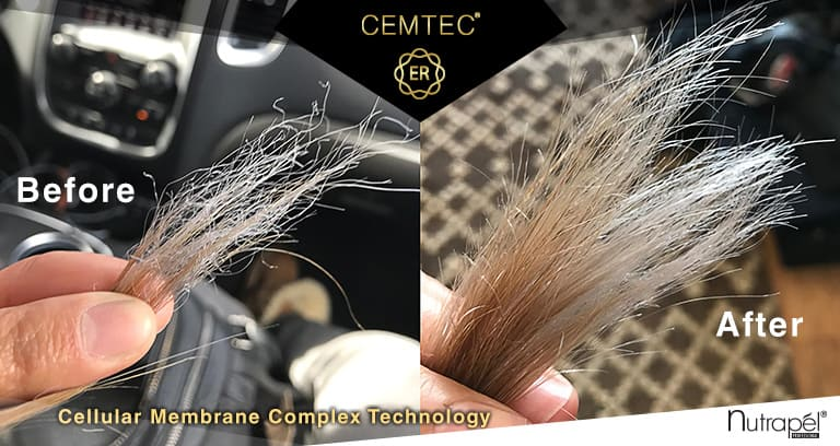 CEMTEC® Cellullar Membrane Complex Technology